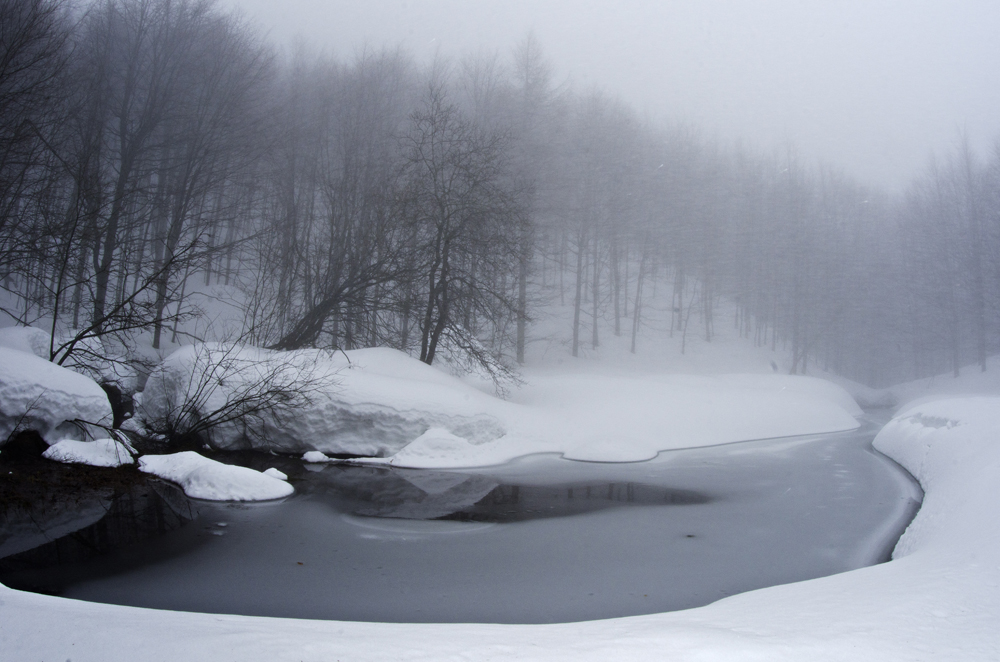 the pond few days before the event